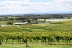 [NSW.Hunter] Wine, Views and great food, day 1 in Hunter Valley